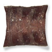 Forensic Helpers, Black Blow Fly Throw Pillow