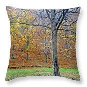 Forest - Jiu Defile Throw Pillow