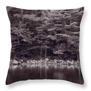 Forest At Jordan Pond Acadia Bw Throw Pillow