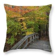Forest Bridge Throw Pillow