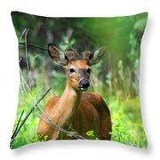 Forest Buck Throw Pillow