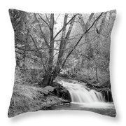 Forest Creek Waterfall In Black And White Throw Pillow