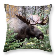 Forest Creeper Throw Pillow