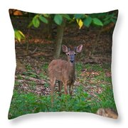 Forest Edge 7365 1754 Throw Pillow