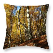 Forest Fall Colors 4 Throw Pillow