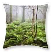Forest Ferns On A Foggy Morning Throw Pillow