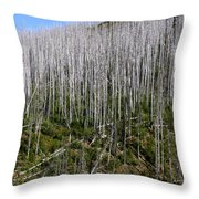 Forest Fire Sticks-3 Throw Pillow