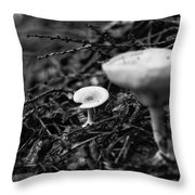Forest Floor 1 Throw Pillow by Nathan Larson