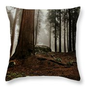 Forest Floor And Fog Throw Pillow