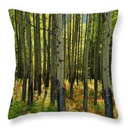 Forest Floor In Autumn, Bow Valley Throw Pillow