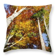 Forest In Autumn Bavaria Germany Throw Pillow