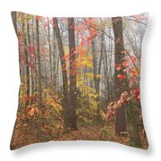 Forest In Late Autumn Throw Pillow