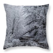 Forest Lace Throw Pillow