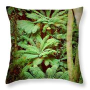 Forest Of Ferns Throw Pillow