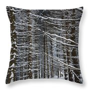 Forest Of Marburg In Winter Throw Pillow