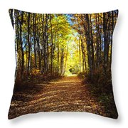 Forest Path In Autumn Throw Pillow