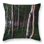 Forest, Shore Of Lake Superior Throw Pillow