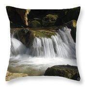 Forest Stream 2a Throw Pillow