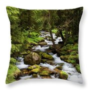 Forest Stream In Tatra Mountains Throw Pillow