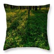 Forest Sunset Throw Pillow by Steve Gadomski
