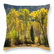 Forested Light Throw Pillow