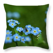 Forget-me-nots In Treman State Park, Ny Throw Pillow