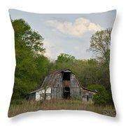 Forgotten Barn 1 Throw Pillow