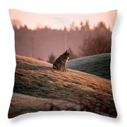 Forlorn Two Throw Pillow