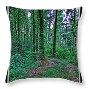 Forrest Trail Throw Pillow
