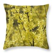 Forsythia In Full Bloom Throw Pillow