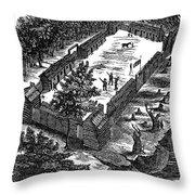Fort Boonesborough, 1775 Throw Pillow