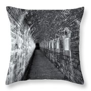 Fort Knox Rifle Gallery II Throw Pillow
