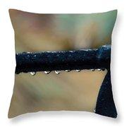 Fort Pierce Morning Dew Throw Pillow