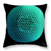 Fossil Diatom, Sem Throw Pillow
