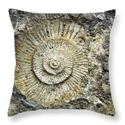 Fossil Geology Throw Pillow
