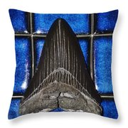 Fossil Megalodon Tooth Throw Pillow