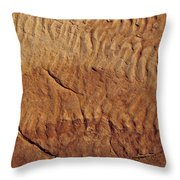 Fossilised Water Ripples In Sandstone Throw Pillow