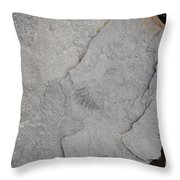 Fossilized Fern Throw Pillow