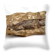 Fossilized Fish Throw Pillow