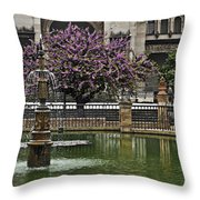 Fountain And Tree Throw Pillow