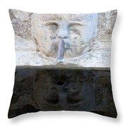 Fountain Face Throw Pillow