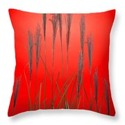 Fountain Grass In Red Throw Pillow