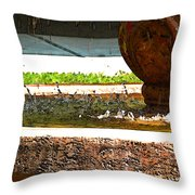 Fountain With Painted Effect Throw Pillow