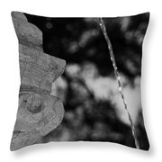 Fountain's Stream Throw Pillow