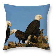 Four Beauty's Throw Pillow