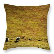 Four Sheep Throw Pillow