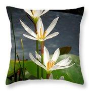 Four Tall Marsh Grass Blooms Throw Pillow