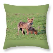Fox And Baby Throw Pillow