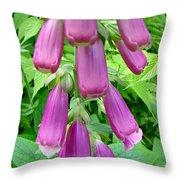 Foxglove Flower Buds - Digitalis Purpurea Throw Pillow