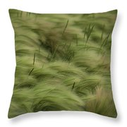 Foxtail Barley And Western Wheatgrass Throw Pillow